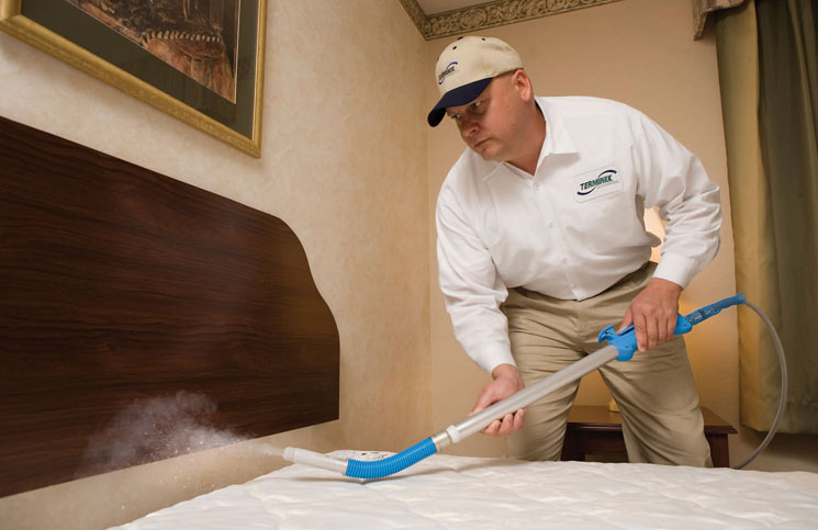Pesticides to Control Bed Bugs